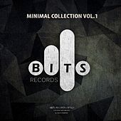 Minimal Collection Vol.1 by Various Artists