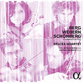 Berg, Webern & Schoenberg: Chamber Music by Various Artists
