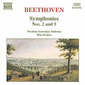 Symphonies Nos. 2 and 5 by Ludwig van Beethoven