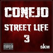 Street Life 3 by Conejo
