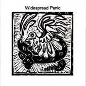 Widespread Panic by Widespread Panic