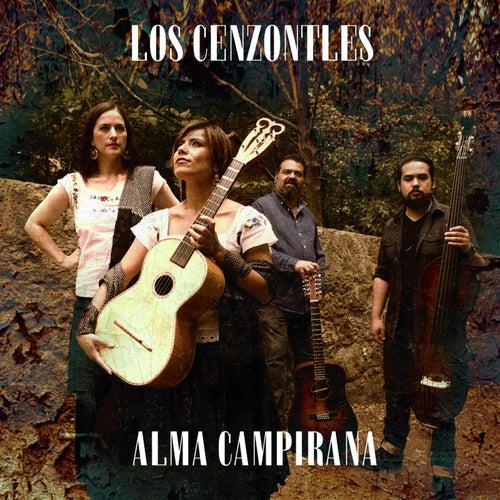 Alma Campirana by Los Cenzontles