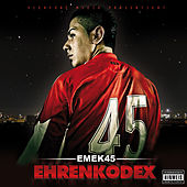 Ehrenkodex by Various Artists