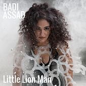 Little Lion Man by Badi Assad