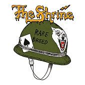 Rare Breed by The Shrine