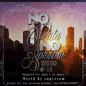 No Pain No Sorrow (feat. D.K) - Single by Drastiko
