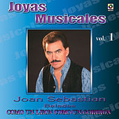 Joyas Musicales, Vol. 1 : Como un León Como un Gorrión by Various Artists