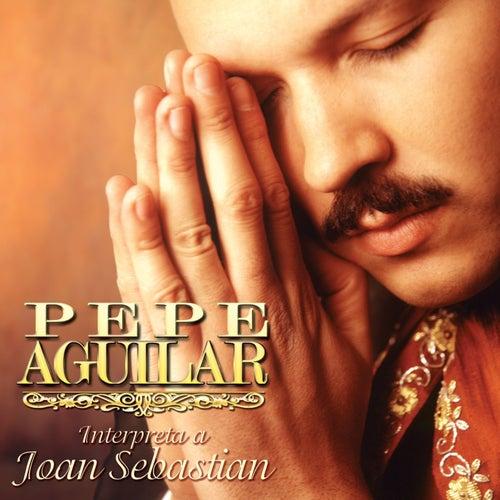 Pepe Aguilar Interpreta a Joan Sebastian by Pepe Aguilar