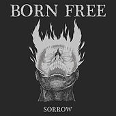 Sorrow (Standard Version) by Born Free