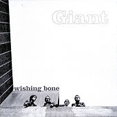 Wishing Bone EP by Giant