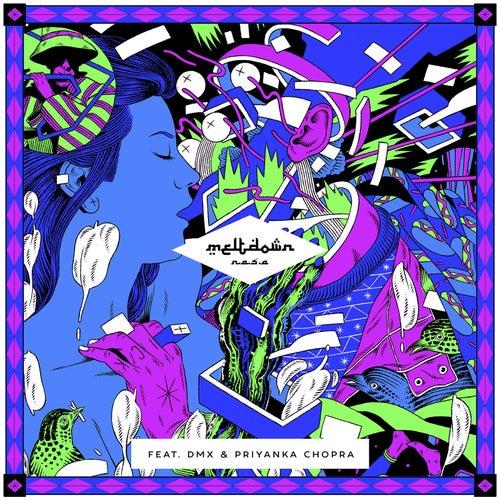 Meltdown (feat. DMX & Priyanka Chopra) by N.A.S.A.