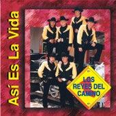 Asi Es la Vida by Los Reyes Del Camino