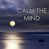 Calm the Mind - Cultivate Positive Energy, Relax Your Body, Manage Fear and Worry, Music for Anxiety Relief by Calm Music Ensemble
