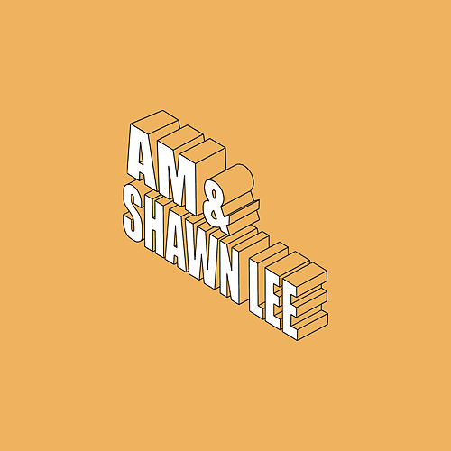 You Are In My System by Shawn Lee's Ping Pong Orchestra