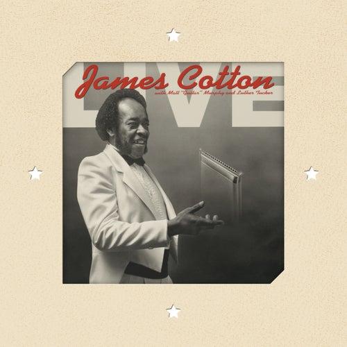 Live At Antone's Nightclub von James Cotton