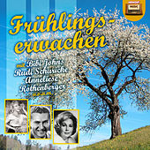 Frühlingserwachen by Various Artists