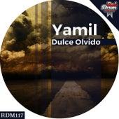 Dulce Olvido - Single by Yamil
