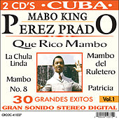 The Mambo King by Various Artists