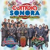 Cumbia Sonora Con la Sonora Santanera & Los Ángeles Azules by Various Artists