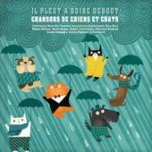 Il pleut à boire debout! by Various Artists
