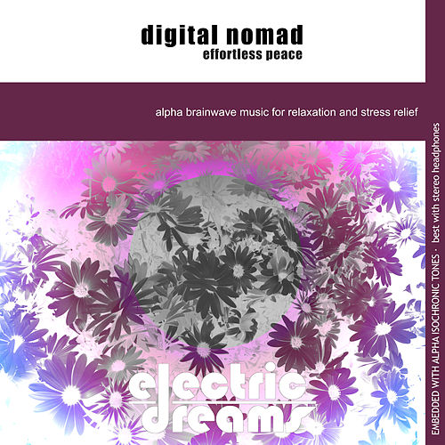 Digital Nomad Effortless Peace by Electric Dreams