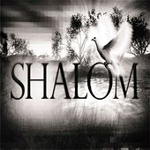 Shalom - Single by Shay