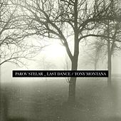The Last Dance / Tony Montana von Parov Stelar