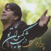 Dar Shabe Gisovane To by Parvaz Homay
