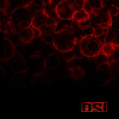 Blood by Osi