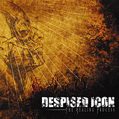 The Healing Process by Despised Icon