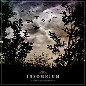 One For Sorrow by Insomnium