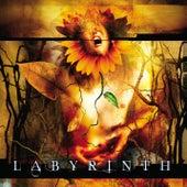 Labyrinth by Labyrinth