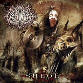 Sheol by Naglfar