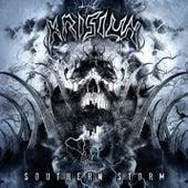 Southern Storm by Krisiun