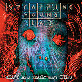 Heavy As a Really Heavy Thing by Strapping Young Lad