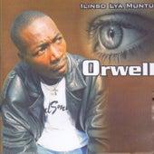 Ilinso Lya Muntu by Orwell