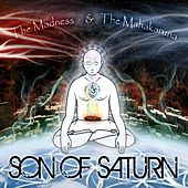 The Madness & the Mahakaruna by Son Of Saturn