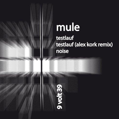 Testlauf by Mule