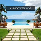 Ambient Feelings by Various Artists