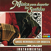Música para Despertar los Sentidos - Tangos Memorables Con Orquesta by Various Artists