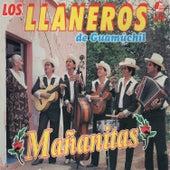 Mañanitas by Los Llaneros De Guamuchil