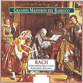 Grandes Maestros del Barroco: Bach by Various Artists