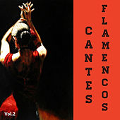 Cantes Flamencos Vol. 2 by Various Artists