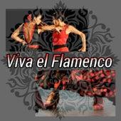 Viva el Flamenco! by Various Artists