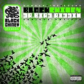 Black Chiney Presents The Dr. Bird Riddim by Various Artists