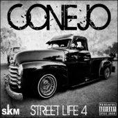 Street Life 4 by Conejo