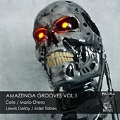 Amazzinga Grooves, Vol. 1 by Various Artists