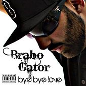 Bye Bye Love by Brabo Gator