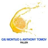 Fallen by Anthony Tomov