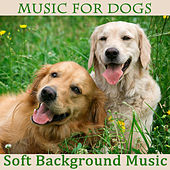 Music for Dogs: Soft Background Music by The O'Neill Brothers Group